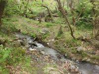 River trekking & τοξοβολία