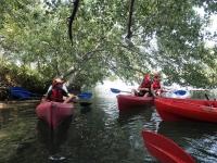 Canoe - Kayak